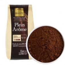 Какао-порошок алкализованный Cacao Barry Plein Aroma 22-24%, Бельгия